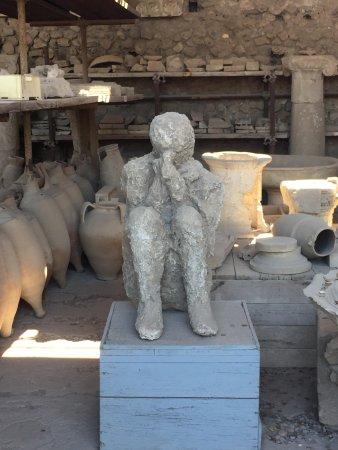 Amalfidriverservice Day Tours: Pompei