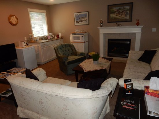 Cornerstones Bed and Breakfast: The common area, with microwave, fridge, fireplace, and TV.