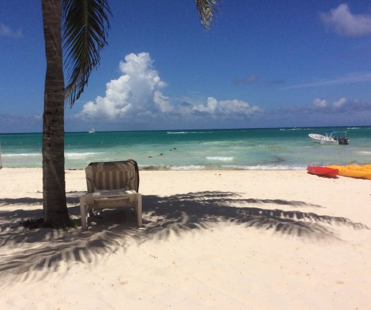 Secrets Maroma Beach Riviera Cancun: The view from our cabana or beach bed.
