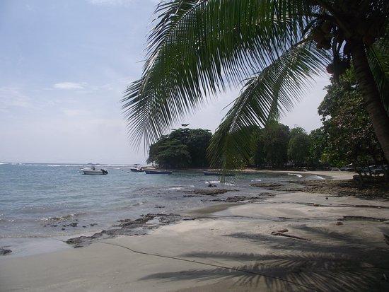 Puerto Viejo Beach: Beach in Puerto Viejo