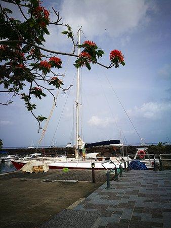 Deshaies, Guadeloupe: IMG_20170523_084851_large.jpg