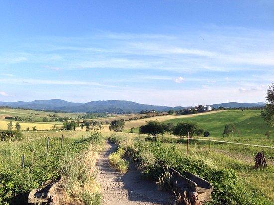 Toscana Ranch: photo4.jpg