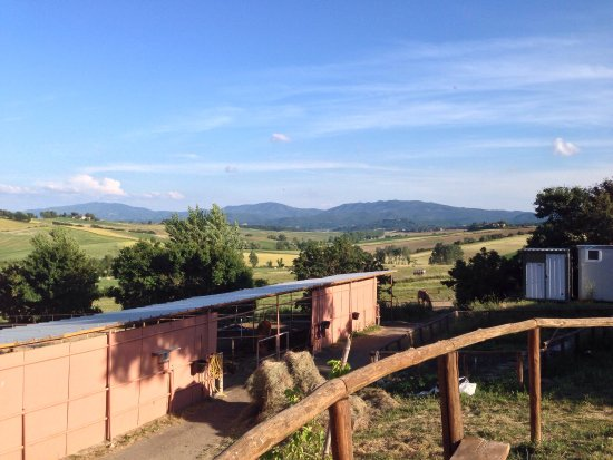 Toscana Ranch: photo5.jpg