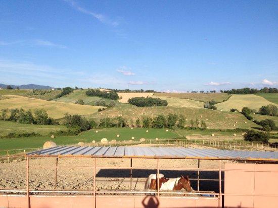 Toscana Ranch: photo6.jpg