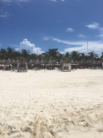 Privilege Beach Club : photo4.jpg