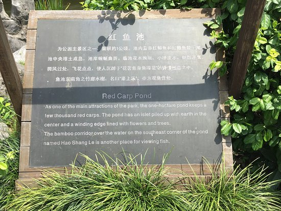 West Lake Colored Port View Fish Garden : photo1.jpg