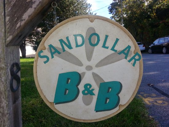 Sand Dollar B&B: Sign out front designed by C.Crane