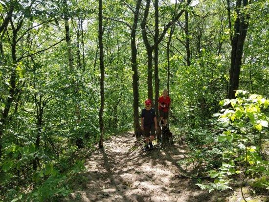 Petoskey State Park: way down