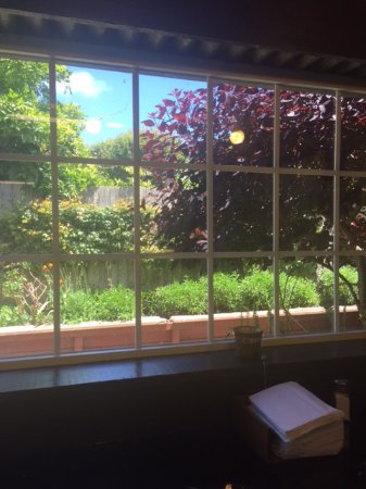 Loleta, Californië: View from inside the cafe to the garden
