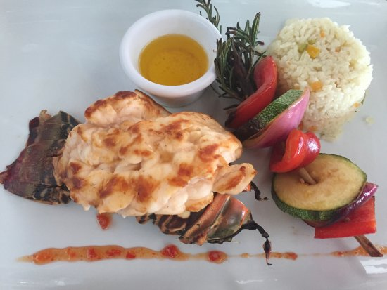 """Blue Lobster: The """"special"""" - also came with a salad"""