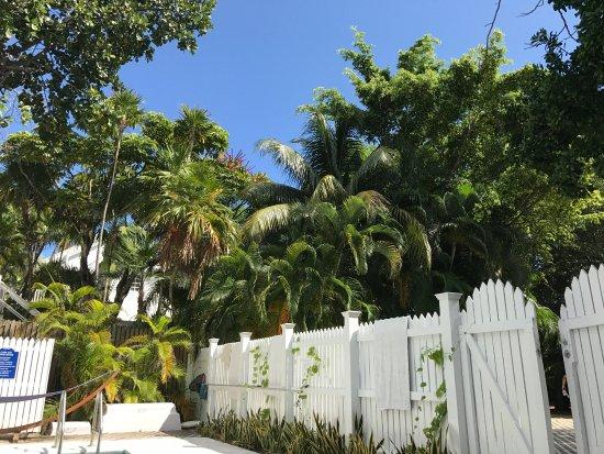 Casa 325: photo2.jpg