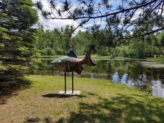 Boyne City, Мичиган: cool fish art