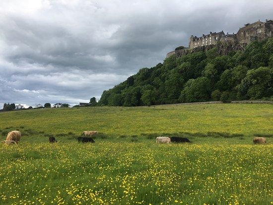 Castlecroft: photo1.jpg