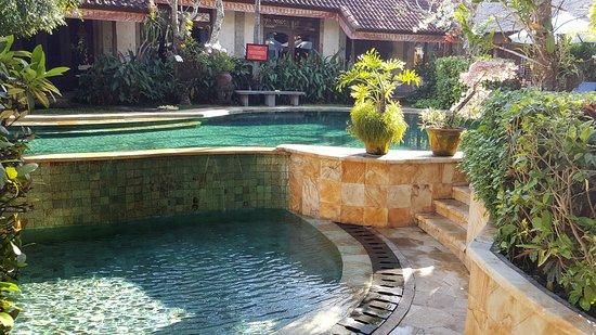 Tamukami Hotel: Quite pool