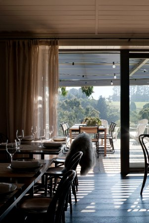 Red Hill, Australia: Polperro Bistro dining space
