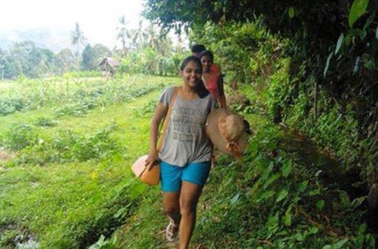 East Bali Trekking Adventure