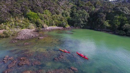 Waitangi, نيوزيلندا: Bay of Islands Half Day