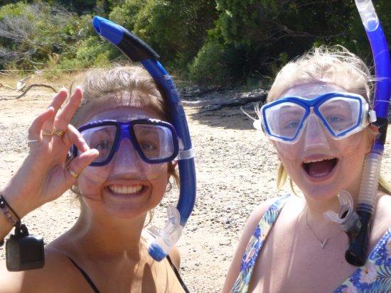Waitangi, New Zealand: Snorkelling
