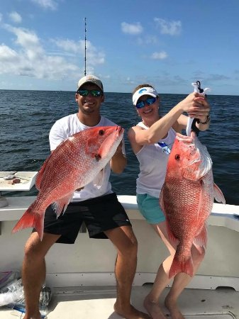 Syl fishing charters biloxi ms anmeldelser tripadvisor for Biloxi fishing charters