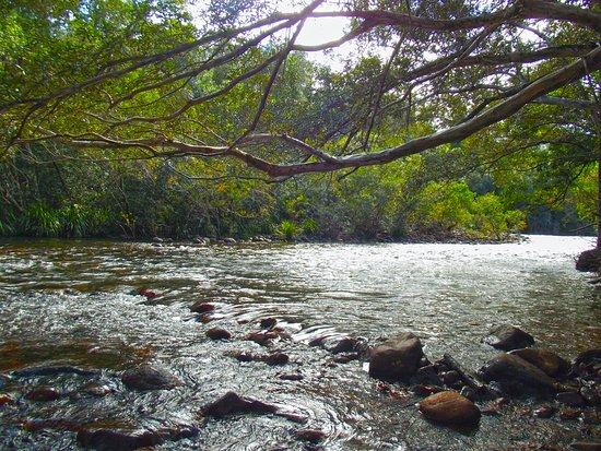 Ingham, Australia: Broadwater Creek