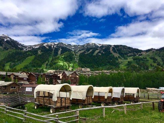 Teton Village, WY: Jackson Hole Mountain Resort