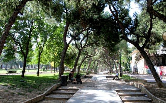 Parque Pignatelli Zaragoza Mapa.Estatua Erigida En Honor Del Ilustrado Pignatelli