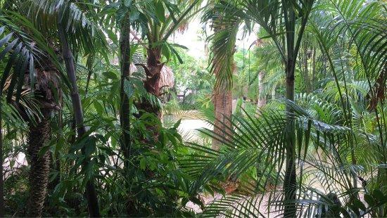 Bamboo Bali Bonaire - Boutique Resort: photo0.jpg