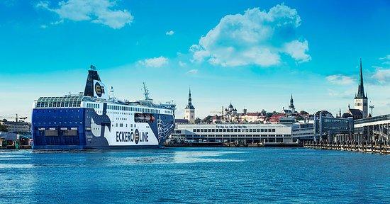 Eckero Line - Cruises