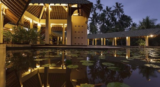 The Palms Hotel: Hotel Garden