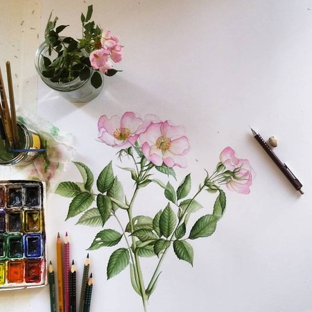 Irina Neacsu Art Studio