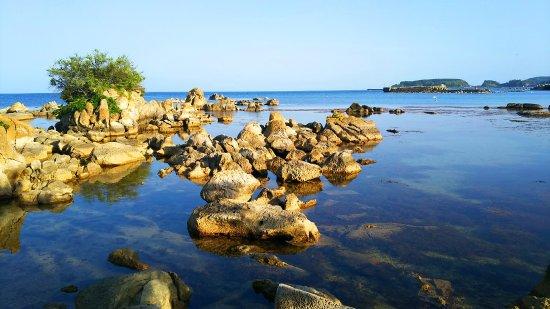 Nosaki Matsushima Beach Camp Site