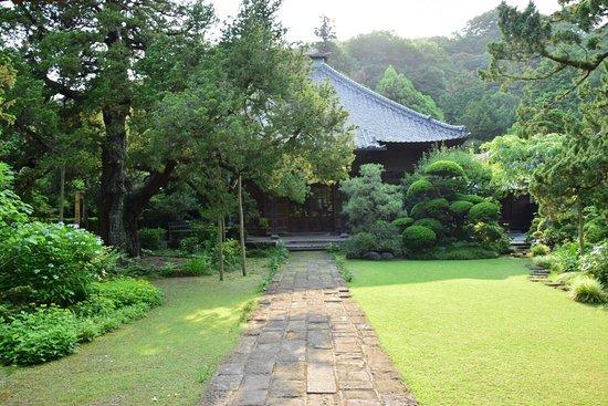 Jufukuji Temple: photo1.jpg