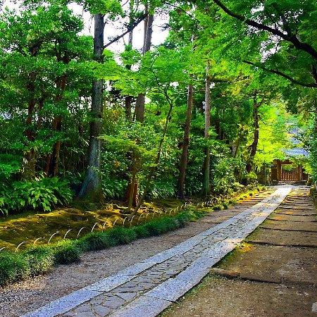 Jufukuji Temple: photo2.jpg