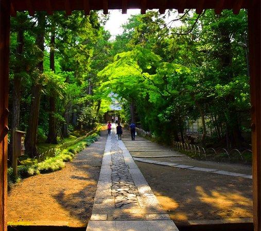 Jufukuji Temple: photo3.jpg
