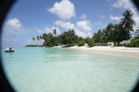 The beach in front of Cokes Beach Maldives