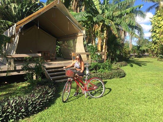 Matavera, Cook Islands: love the bikes here