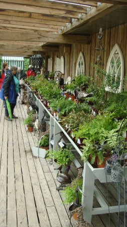 Kendal, UK: The Plant Sales