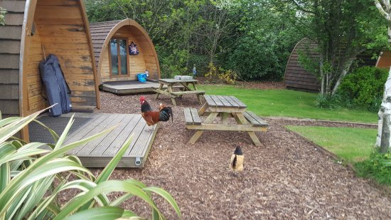 Tavistock, UK: The campsite pod area