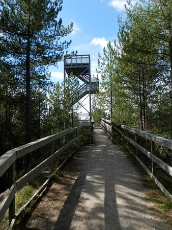 Forres, UK: Lookout tower at the end of the trail.