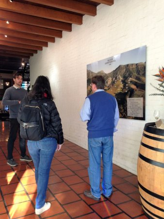 Constantia, Sydafrika: Introduction to the varietals and the different blocks where grapes are planted. The importance