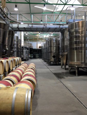 Constantia, South Africa: French and Belgium oak barrels