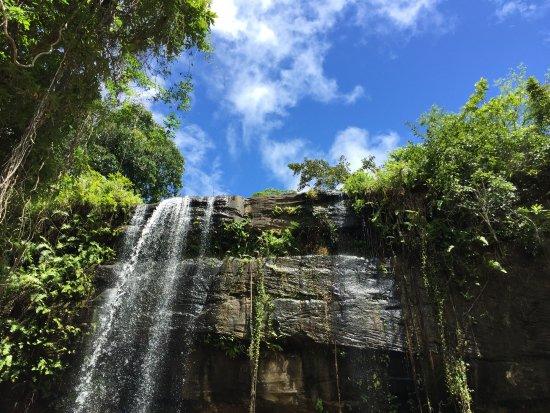 Kwale, Kenia: 在瀑布周圍