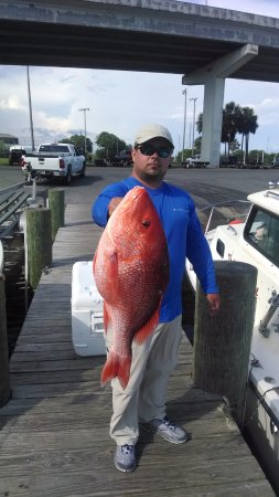 a nice red snapper while fishing with capt. charles charters in Apalachicola,fl.