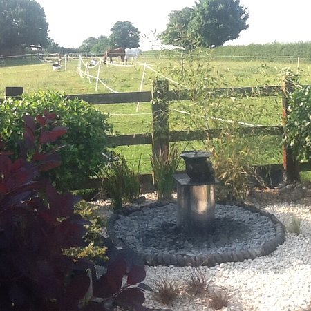 Bloodstock Barn Bed and Breakfast: Lovely water feature in grounds.