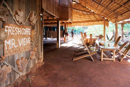 Salavan Province, لاوس: Coffee tour in Ban Houay Houn - Salavanh province