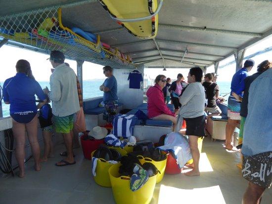 Magnetic Island, Australia: Great trip around the island