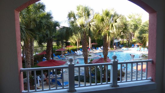 Marriott's Grande Vista: Palm Tree View