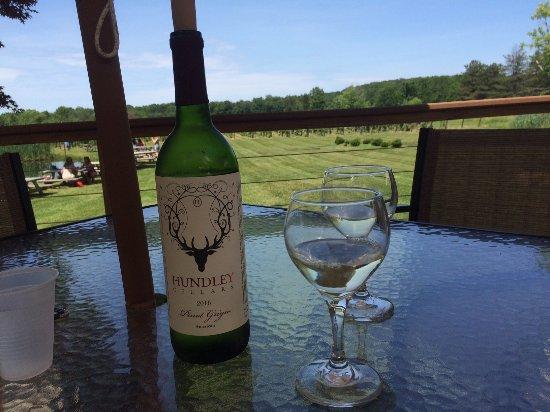Geneva, Ohio: Kick back, enjoy the wine and view!