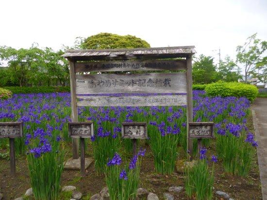 Miyakonojo Image