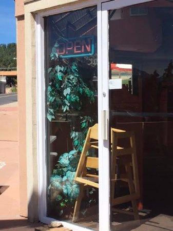 Woodland Park, Kolorado: Plastic plants are melting and dirty